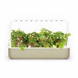 Klicka och odla Smart Garden 9 Starter Kit