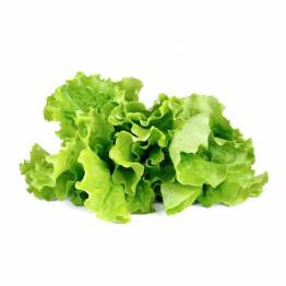 Klicka och odla Smart Garden refill 3-pack-grönsallad