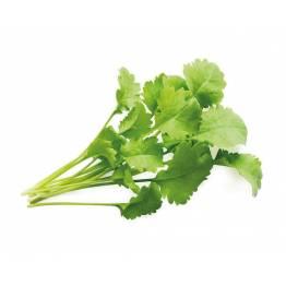 Klicka och odla Smart Garden refill 3-pack-Garden Cress