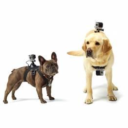 GoPro hållare till din hund/katt